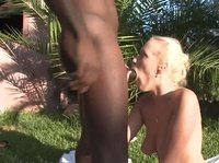 A young blonde girl sucks huge black dick in the back yard